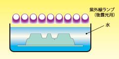 tenaflex-p-05